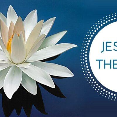 Jesus is the Vine   Cover